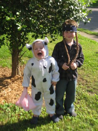 Cow and Willie 1